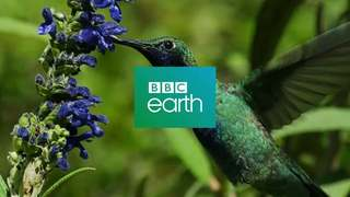 BBC earth2.jpg